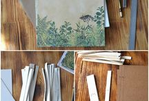 Ботанический альбом