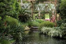 Conservatories and Greenhouses