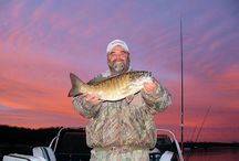 Smallmouth Bass Fishing on Lake Texoma / Smallmouth bass now rank among the top 15 most preferred species of sport fish.  They prefer large clear-water lakes & cool streams with clear water & gravel substrate.  It makes little difference whether you are fishing Oklahoma or Texas, Lake Texoma fishing with Dan is a quality outdoors experience packed with memories of a lifetime.   http://www.danbarnett.com/smallie.php