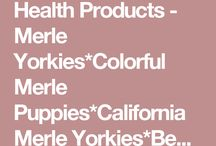 Yorkie Health Products