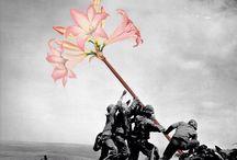 Mettete dei fiori. / By Mister Blick