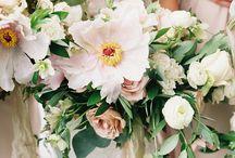 flower: spring