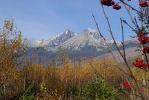 Hiking and walking in Carpathian mountains / Randonnées dans les parcs nationaux des Carpates...