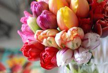 Flower Arrangements / by Heidi Wilson