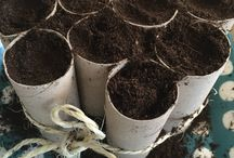 Gardening Ideas Vegetables