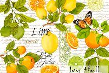 L de frutas