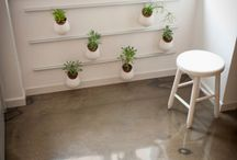 Plant Decor / Ideas for displaying plants in decorative ways at home, in the office or for special events