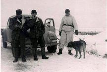 volkswagen WWII