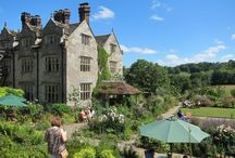 William Robinson Festival 2015 / Our annual garden open day to celebrate the Birthday of their pioneering creator, the late William Robinson,
