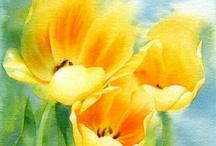 Sárga tulipánok