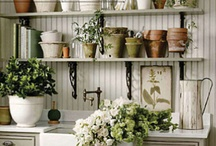 Porch-Deck Area / by Amy Galloway