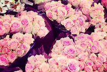 loved flowers