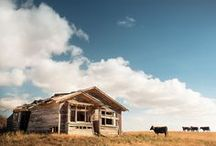 Hawkes Bay Photography