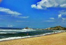 Verão 2015 Ferrugem - SC / Praia