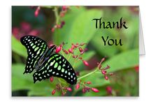 Thank you cards / Thank you cards from around the web! / by ruthjollyphotography