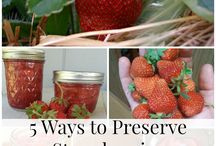 Preserving for Winter!! / Tips and Tricks to help preserve your summer harvest so that you can enjoy it year round!