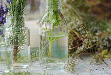 Milagros de las plantas medicinales.