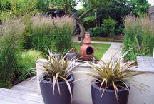 my bohemian garden