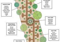 Garden plan 庭のプラン