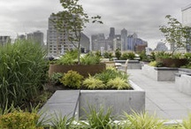 Roof Top Gardens / Landscape Architecture, Landscape Design, Green Roof, Living Roof, Roof top Patios