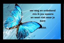 Nederlandstalige muziek