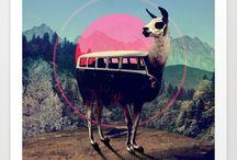 bus bus bus.. / Bus, bus, bus, campers,motorhomes