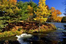 Autumn My Favourite Season!