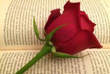 Roses / Rose