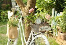 Passeggiando in bicicletta / ... Passeggiando in bicicletta accanto a te, pedalare senza fretta sentendoti vicina, da che parte adesso siamo indovina, il futuro è nato stamattina... (Riccardo Cocciante)