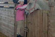 My Horses Dária