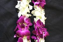 Graduation Leis @United / All these leis are available for purchase at United Wholesale Flowers (2510 Channing Ave. San Jose, CA 95131)