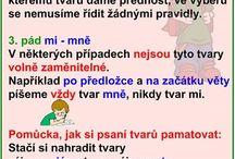 Ivona Cinková / Český jazyk
