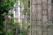 Trädgård Jungfrusund