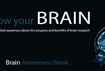 Awareness Matters / Celebrating Awareness for Hydrocephalus and All Causes!