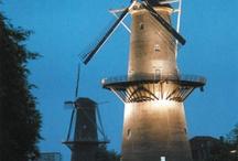 Schiedam / Woonplaats