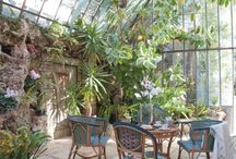 Through the glass / Green houses, windows, orangery, conservatory