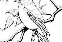 Sagome uccellini