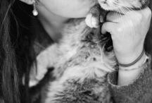 Fotos creativas con tu gato