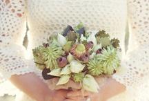 wedding flowers / natural floral arrangements. australian native flowers. wedding. simple and elegant flowers.