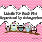Classroom - Bird/Owl Decor and Organization