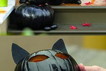 zwarte kat voor helloween