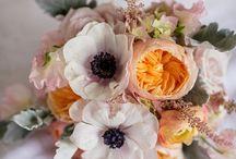 fleur / by Chelsea Diamond