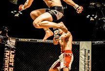 MMA / Mixed Martial Arts