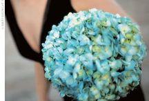 Blue / by Kelly Cottier