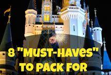 Disney Trip / by Jennifer Freeman