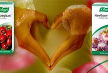A.Vogel Crateagisan® & Hawthorn-Garlic® / Ο κράταιγος είναι το αποτελεσματικότερο βότανο για την ενδυνάμωση της καρδιάς και την ισορροπία του κυκλοφορικού.Είναι εξαιρετικό ίαμα για την υψηλή αρτηριακή πίεση,τις καρδιαγγειακές παθήσεις,την προστασία από τα αρχικά στάδια καρδιοπάθειας,την εξασθένηση των καρδιακών μυών,την πίεση και το σφίξιμο  στο στήθος,την ήπια αρρυθμία, και σαν καρδιοτονωτικό . Εμποδίζει την οξείδωση της χοληστερίνης και τη σκλήρυνση των αρτηριών.