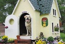 Dog House / Cute, clever dog houses.