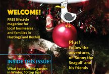 Monthly Seagull Editions / Here are all of the front covers that link to my website where you can read and download the latest issue of the Monthly Seagull Magazine.