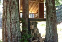 Anna Tree House