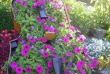 Flowers music instruments